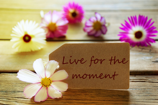 Brown Label With Sunny Yellow Effect With Life Quote Live For the Moment With Purple And White Cosmea Blossoms On Wooden Background Vintage Retro Or Rustic Style